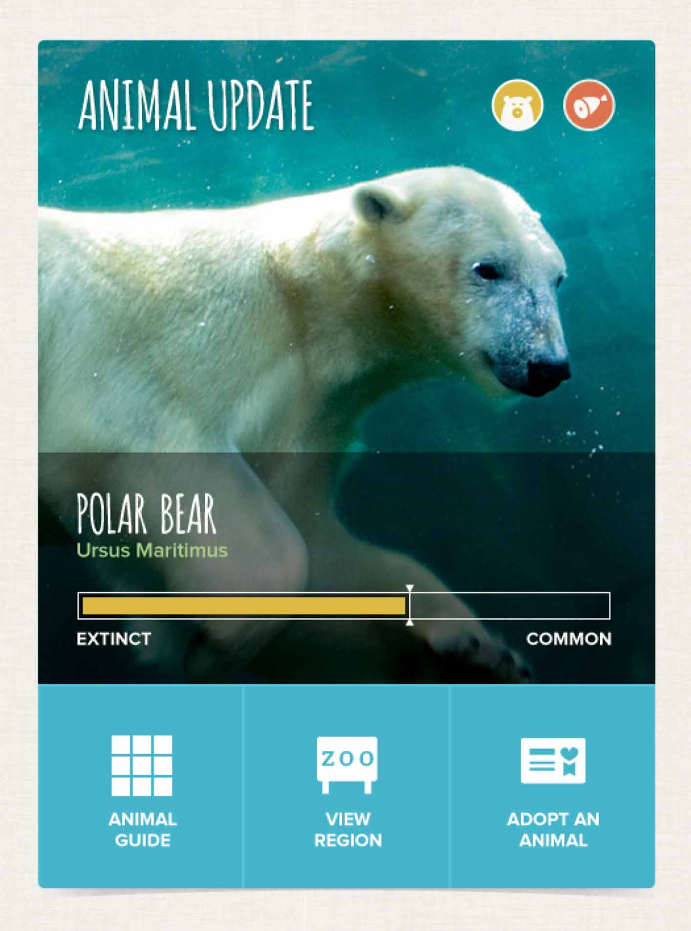 Columbus Zoo Website - Animal Update Module
